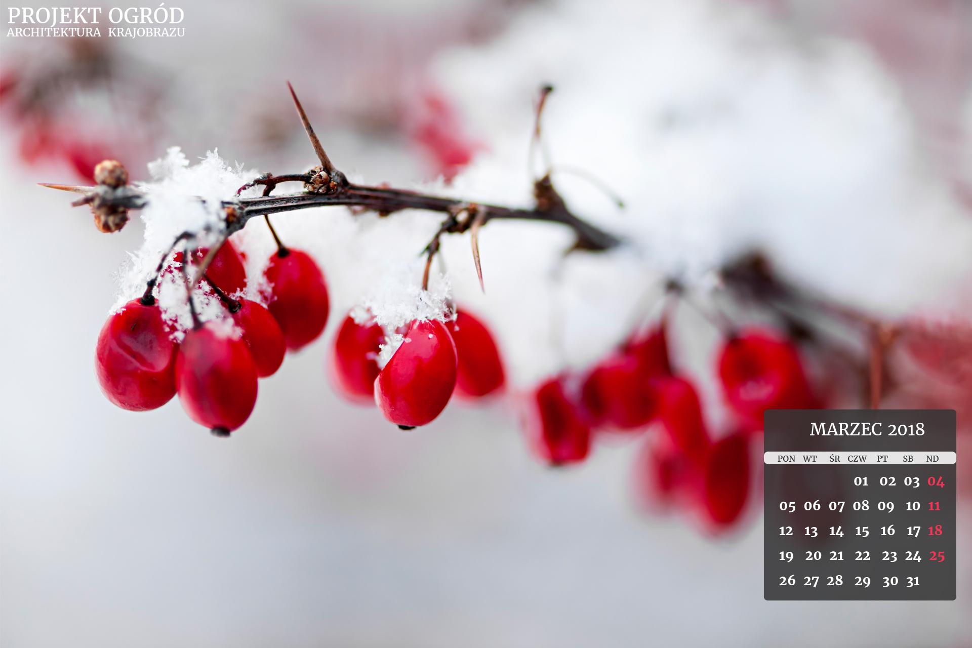 kalendarz-b-marzec-2018-1920x1280