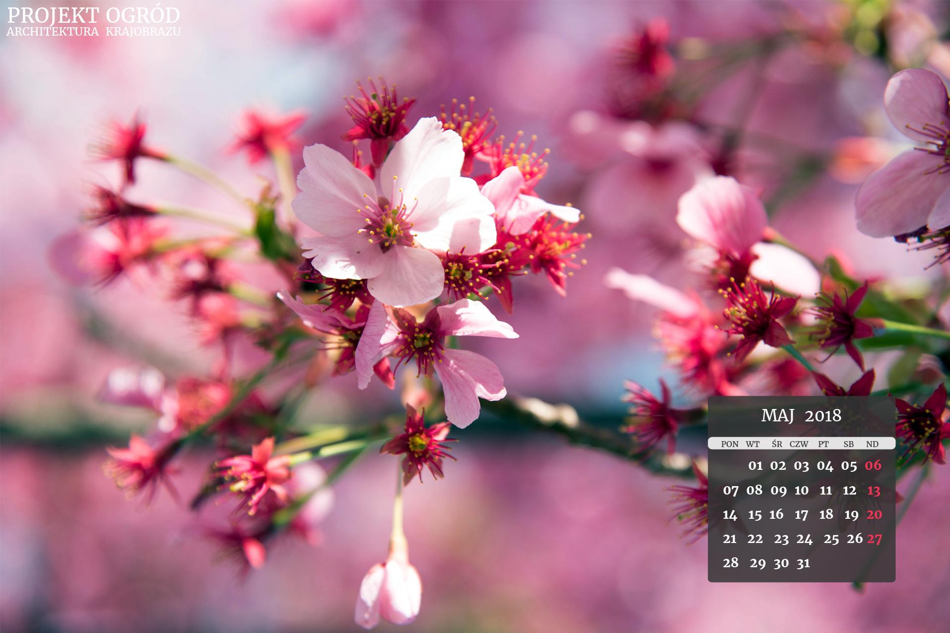 kalendarz-b-maj-2018-1920x1280