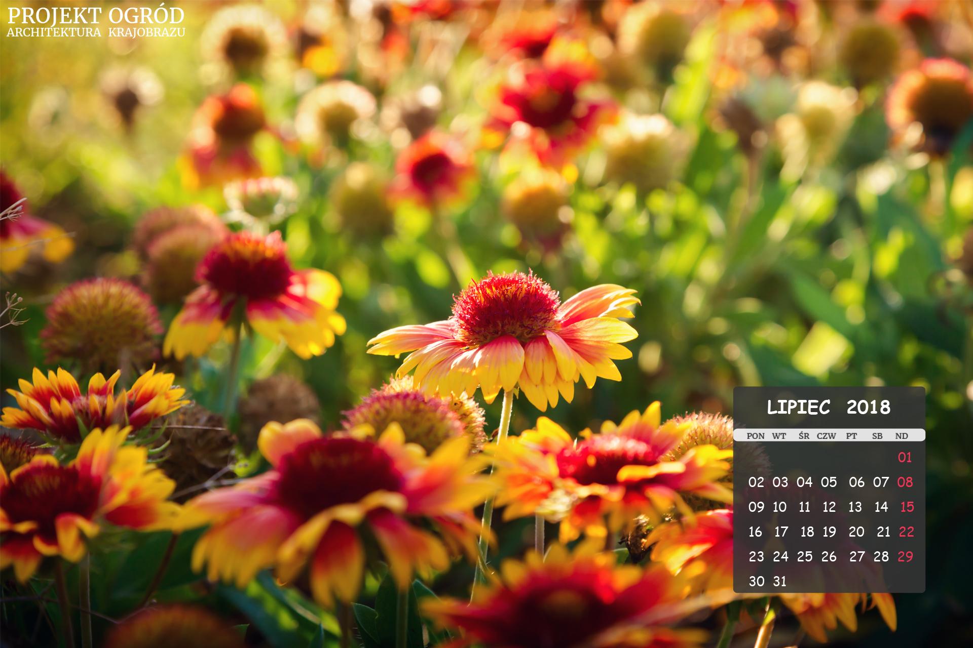 kalendarz-b-czerwiec-2018-1920x1280
