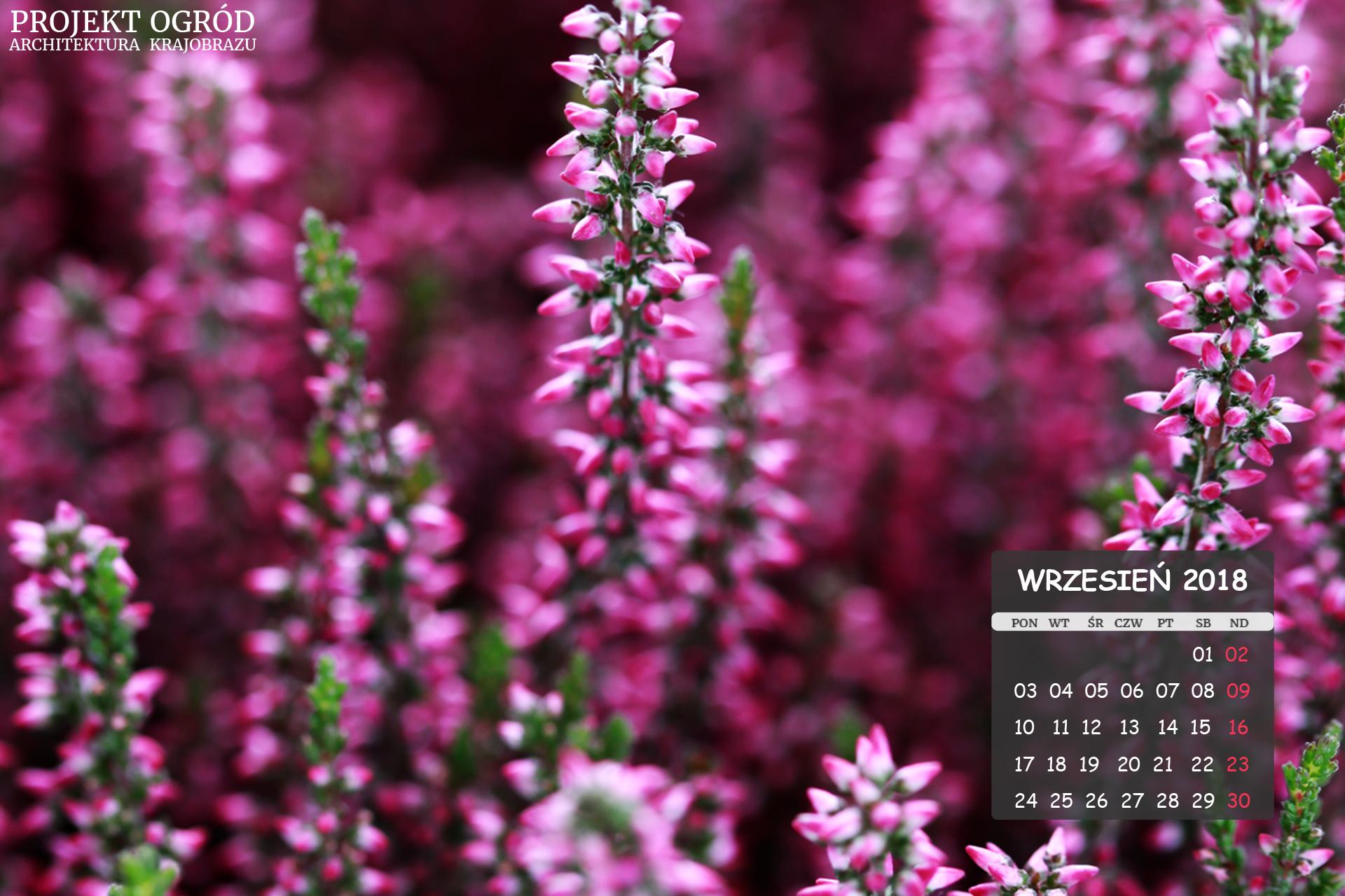 kalendarz-b-wrzesien-1920x1280